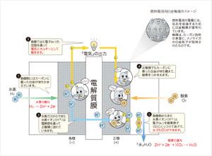 白金と燃料電池